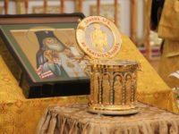АНОНС: программа пребывания мощей свт. Луки (Войно-Ясенецкого) в Калининграде