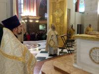 Завершилось пребывание ковчега с мощами святителя Луки Крымского в Кафедральном соборе Христа Спасителя.